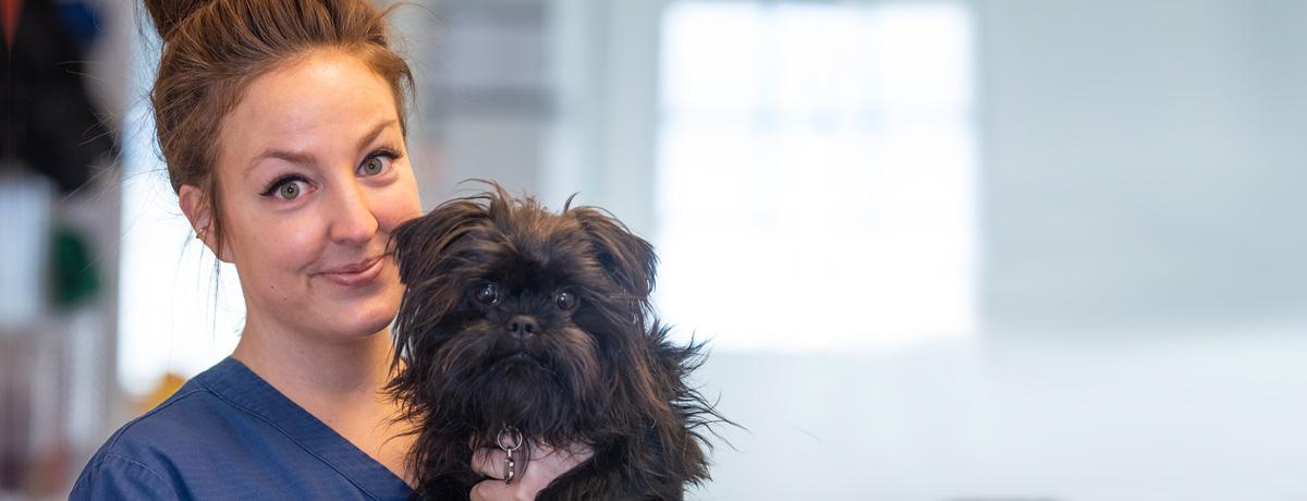 Hund i armen til en veterinær
